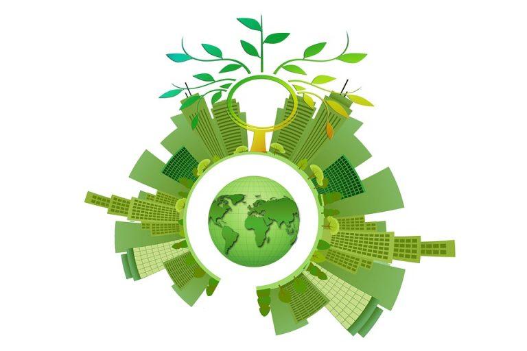 """Você é sustentável ou só segue a """"modinha""""?"""
